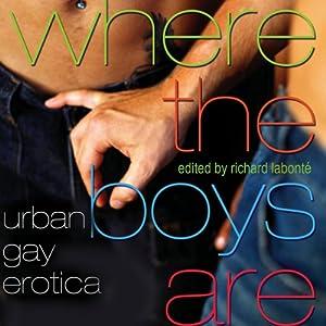 Where the Boys Are: Urban Gay Erotica Audiobook