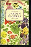 img - for Garden Flowers in Colour book / textbook / text book