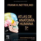 By Frank H. Netter Atlas de Anatomia Humana (Spanish Edition) (5th Edition) [Paperback]