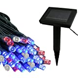 Flipo Solar 100 LED String Light, Red, White and Blue