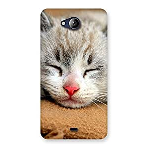 Ajay Enterprises sleeping sweet kity Back Case Cover for Canvas Play Q355