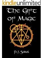 The Gift of Magic (The Shadowmage Saga Book 1)