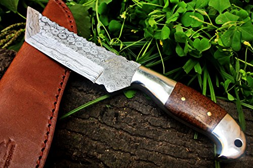 ++DKC-42 OTTER Tanto Fixed Damascus Hunting Knife Mahogany Micarta 9