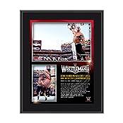 John Cena WrestleMania 31 10 x 13 Photo Collage Plaque