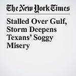 Stalled Over Gulf, Storm Deepens Texans' Soggy Misery   Jack Healy,Richard Pérez Peña,Alan Blinder