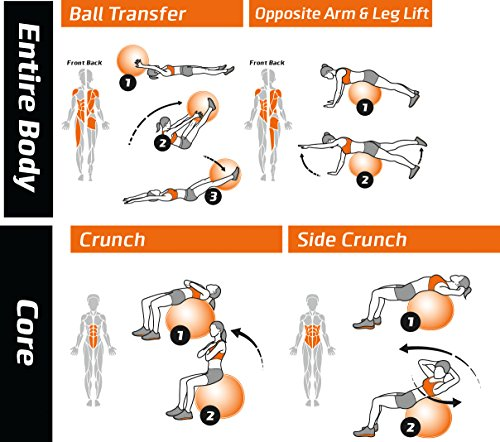 Stability Ball Workout Routine: Exercise Ball Poster
