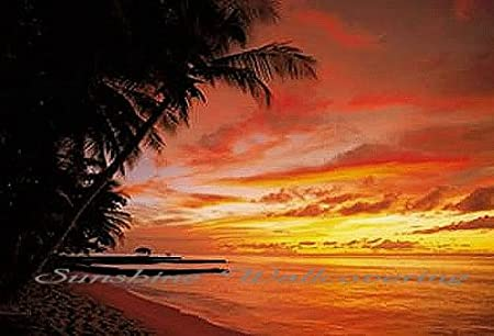 Beautiful Sunset Wall Mural for Wall Decor