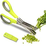 Herb Scissors - Multipurpose Kitchen Shears with 5 Stainless Steel Blades - Attached Handy Cleaning Comb  Chef Trusted Premium Cooking Gadget for a Healthy Meal(Green)