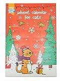 Good Girl Advent Cat Calendar