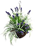 Artificial Lavender & Starflower Flowering Hanging Basket in 12