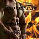 Into the Fire: Forbidden Love, Book 3 (       UNABRIDGED) by Danielle James Narrated by Nathan Drake