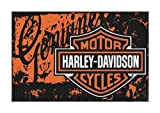 Harley-Davidson Distressed Genuine B&S Tufted Rug -20