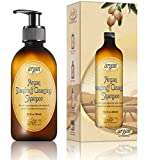 Dandruff Cleansing Argan Hair Shampoo Exclusive Herbal Oils Blend Sulfate & Paraben Free Shampoo 10.1 Oz Deeply Cleanses Flake Residues, Nourishes & Promotes Healthy Hair