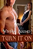 Turn It On: Turner Twins, Book 1