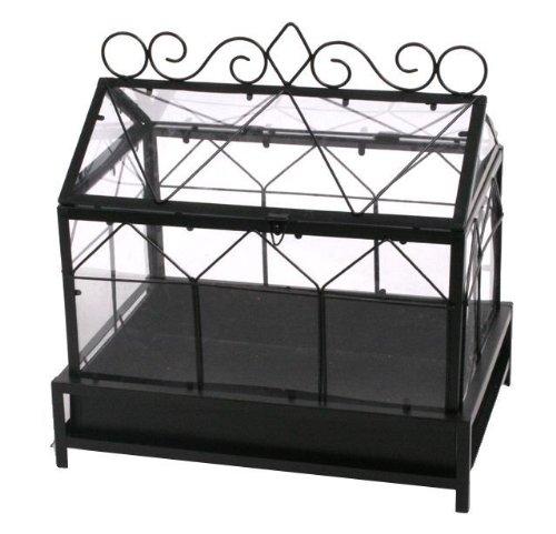 gew chsh user suntshop. Black Bedroom Furniture Sets. Home Design Ideas