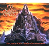 Jester Race: Black Ash Inheritance ~ In Flames