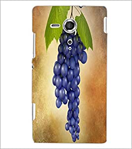 PRINTSWAG GRAPES Designer Back Cover Case for SONY XPERIA SP