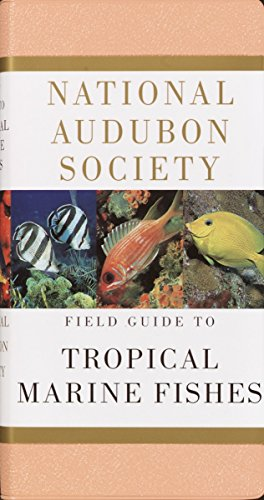 National Audubon Society Field Guide to Tropical Marine Fishes: Caribbean, Gulf of Mexico, Florida, Bahamas,  Bermuda (Tropical Fish Guide compare prices)