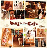 Dog in The Cafe 2009年カレンダー