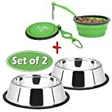 Lally Pet 32-Ounce Stainless Steel Dog Bowl with 7-Inch Silicone, Bottle Holder and Clip, Set of 2