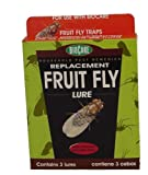 Springstar Fruit Fly Lures