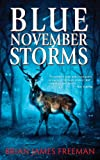 img - for Blue November Storms book / textbook / text book