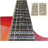 Guitar Fret Stickers Note Fretboard Label - Easy Use - UK Stock - Free Picks/Plectrums