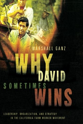 Why David Sometimes Wins: Leadership, Organization, and...