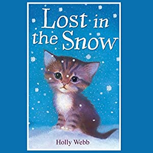 Lost in the Snow Audiobook