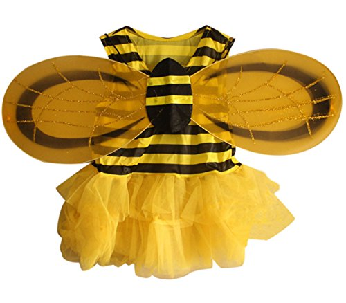 Honey (Cute Honey Bee Costumes)