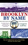 img - for Brooklyn by Name: How the Neighborhoods, Streets, Parks, Bridges and More Got Their Names book / textbook / text book