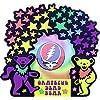 グレイトフルデッドベア  フォトフレーム DANCING BEAR PHOTO FRAME STARS