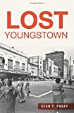 img - for Lost Youngstown book / textbook / text book