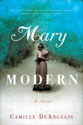 Image for Mary Modern: A Novel