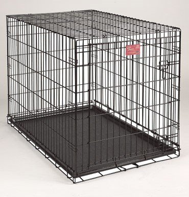 48 Inch Dog Cage
