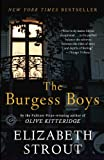 img - for The Burgess Boys: A Novel book / textbook / text book