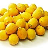 ■■エコレモン S~Mサイズ 約5キロ ランキングお取り寄せ