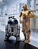 Star Wars Keilrahmen Bild 50x70cm auf Leinwand (Nr.1 R2D2 &...