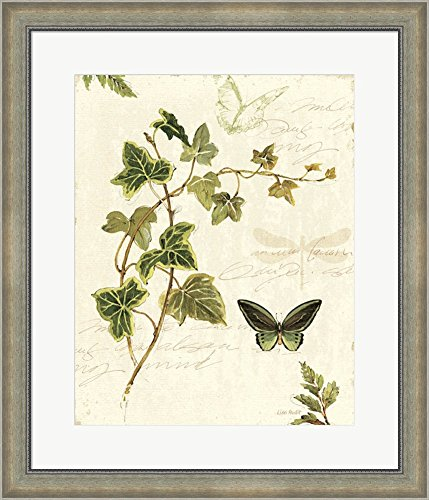 ivies-and-ferns-iv-by-lisa-audit-framed-art-print-wall-picture-silver-scoop-frame-with-hanging-cleat