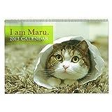 2013年 動物写真ウォールカレンダー (猫/まるちゃん)