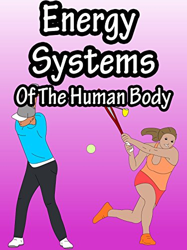 Energy Systems Of The Human Body