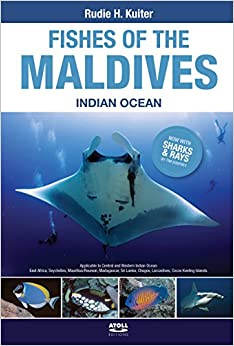 Fishes of the Maldives, Indian Ocean.: Rudie H Kuiter, Tim Godfrey