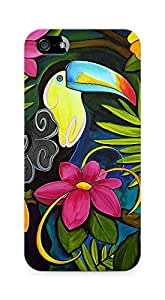 Amez designer printed 3d premium high quality back case cover for Apple iPhone 5s (Canvas Giclee color)