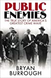 img - for Public Enemies: The True Story of America's Greatest Crime Wave book / textbook / text book