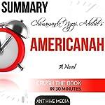 Summary of Chimamanda Ngozi Adichie's Americanah |  Ant Hive Media
