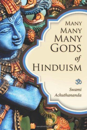 Many Many Many Gods of Hinduism: Turning believers into non-believers and non-believers into believers - Malaysia Online Bookstore