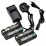 DSTE® 2pcs Rechargeable Li-ion Battery + Charger DC01U for Sony NP-F550, NP-F330, NP-F530, NP-F570 and Sony CCD-RV100, CCD-RV200, CCD-SC5, CCD-SC5/E, CCD-SC55E, CCD-SC55, CCD-SC6, CCD-SC65, CCD-SC7, CCD-SC7/E, CCD-SC8/E, CCD-SC9, CCD-TR1, CCD-TR11, CCD-T
