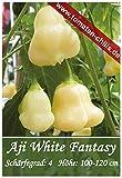 Chili Samen - 10 Stück - Aji White Fantasy