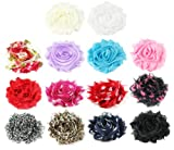 HipGirl 14pc Set Small 2″-2.5″ Shabby Chiffon Flower Hair Clips – One Size. In Gift Box