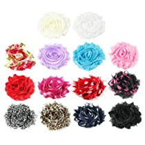 HipGirl 14pc Set Small 2-2.5 Shabby Chiffon Flower Hair Clips - One Size. In Gift Box